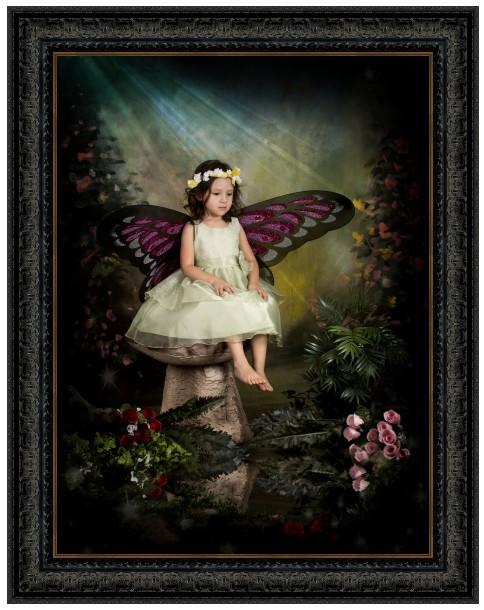 butterfly fairy portrait in ornate black frame